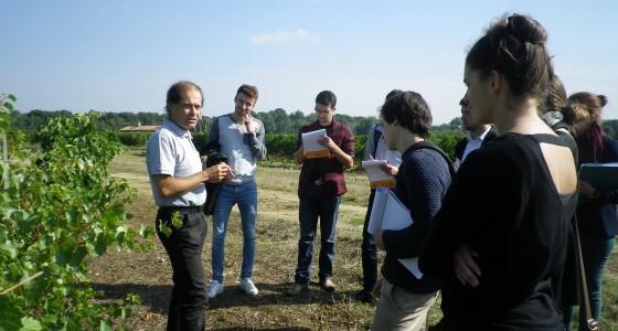Cours de viticulture, avec Monsieur Philippe PIAUD